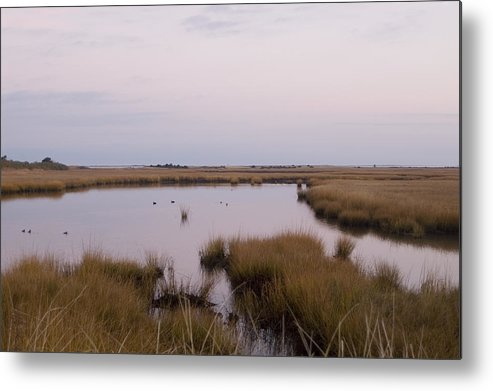Nantucket Metal Print featuring the photograph Folgers Marsh Nantucket by Henry Krauzyk