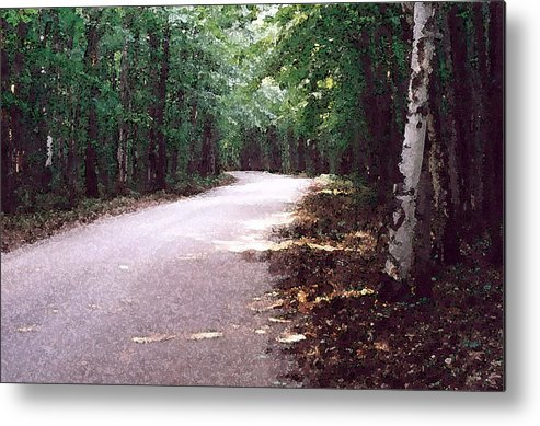 Forest Metal Print featuring the photograph Forest In The Road Wc 2 by Lyle Crump