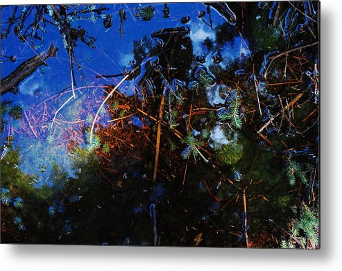 Forest Puddle Metal Print featuring the photograph Forest Puddle by Rebecca Fulweiler