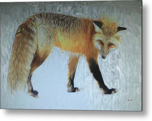 Maine Art Metal Print featuring the digital art Foxy Lady by Dennis Baswell