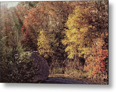 Autumn Metal Print featuring the photograph From The Light Above by Judy Vincent