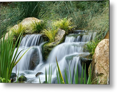 Landscape Metal Print featuring the photograph Gentle Stream by Carlo Caballero