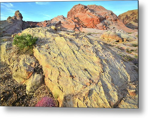 Valley Of Fire State Park Metal Print featuring the photograph Gold Lava Flow In Valley Of Fire by Ray Mathis
