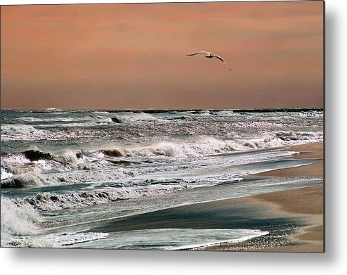 Seascape Metal Print featuring the photograph Golden Shore by Steve Karol