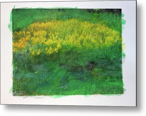 Wildflowers Metal Print featuring the photograph Goldenrods In Field by George Ferrell