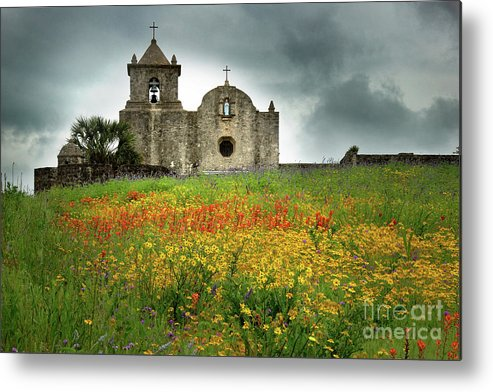 Landscape Metal Print featuring the photograph Goliad In Spring by Jon Holiday