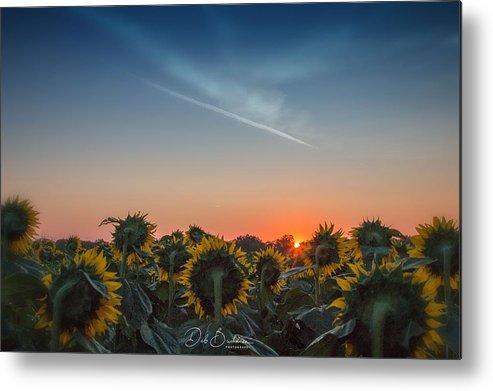 Sunrise Metal Print featuring the photograph Good Morning by Deb Buchanan