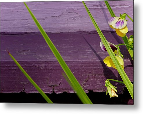 Abstract Metal Print featuring the photograph Green On Purple 6 by Art Ferrier