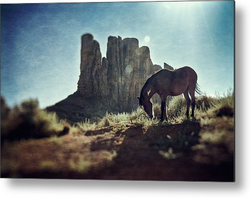 Horse Metal Print featuring the photograph Greetings From The Wild West by Radek Spanninger