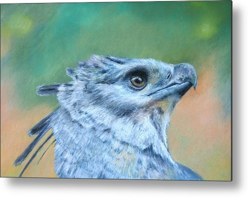 Rainforest Metal Print featuring the painting Harpy Eagle Two by Ceci Watson