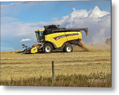 Harvest Metal Print featuring the photograph Harvest by Ann E Robson