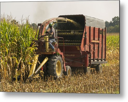 Corn Metal Print featuring the photograph Harvesting by Johnnie Nicholson