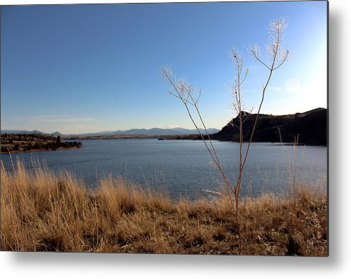 North Metal Print featuring the photograph Hauser Lake by Nicholas Miller