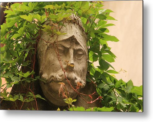 Venice Metal Print featuring the photograph Head With Vines by Michael Henderson