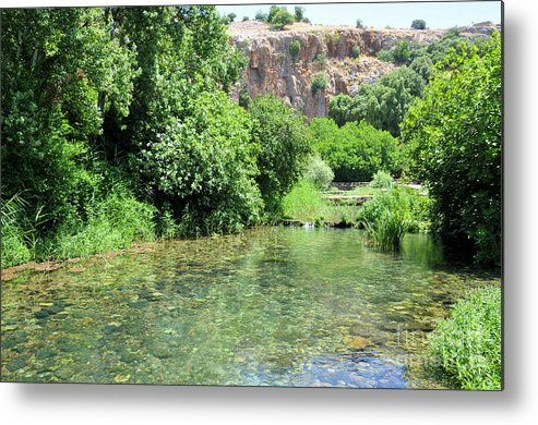 Hermon Metal Print featuring the photograph Hermon Stream Nature Reserve by Shay Levy
