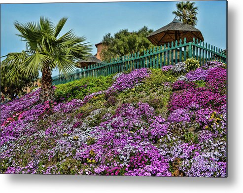 Flowers Metal Print featuring the photograph Hill Of Flowers by Tommy Anderson