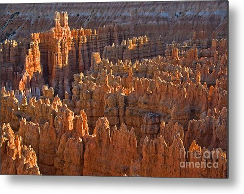 Hoodoos Metal Print featuring the photograph Hoodoos At Black Birch Canyon by Neil Doren