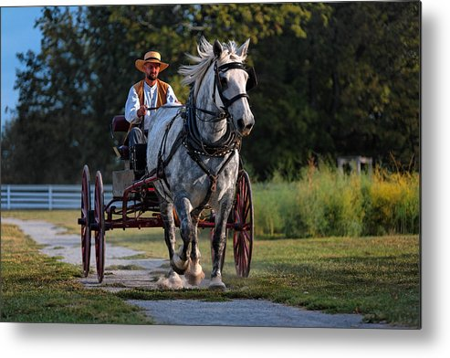 Horse Metal Print featuring the photograph Horse And Buggy by Lone Dakota Photography