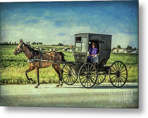 Horse And Buggy Metal Print featuring the photograph Horse And Buggy by Lynn Sprowl