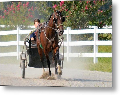 Metal Print featuring the photograph Horse Carriage Racing In Delmarva by Kim Bemis