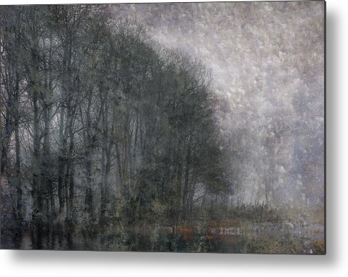 Landscape Metal Print featuring the photograph Icy Fog by Ed Hall