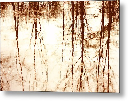 Reflection Metal Print featuring the photograph In Reflection by Barbara White