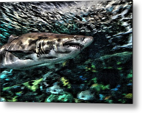 Metal Print featuring the photograph In The Deep by Dennis Sullivan