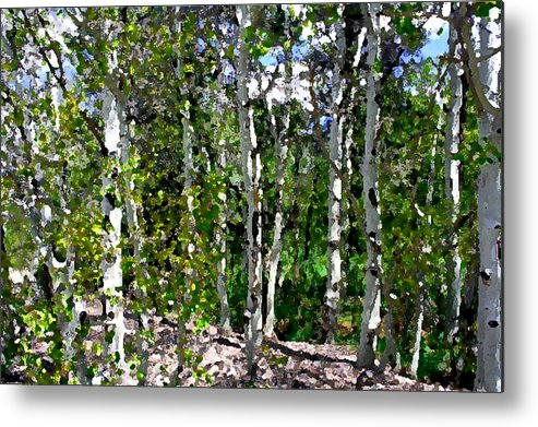 Photo Metal Print featuring the photograph Into The Forrest by Mary Gaines