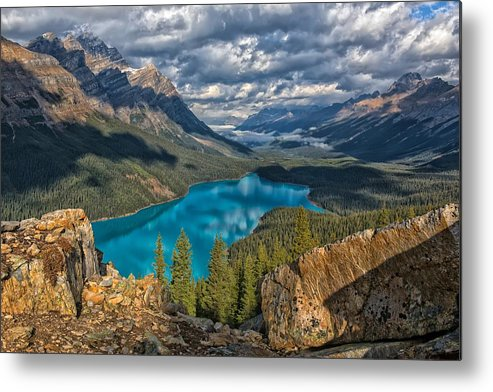 Peyto Lake Metal Print featuring the photograph Jewel Of The Rockies by Philip Kuntz