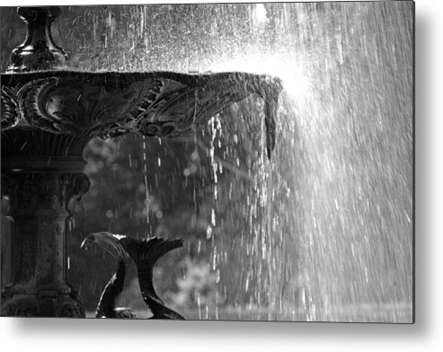 Water Metal Print featuring the photograph Just Add Water.... by Martina Fagan
