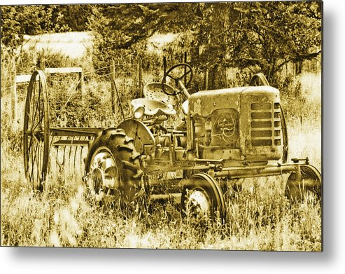 Vintage Metal Print featuring the photograph Just For Lookin' At... Now by Linda McRae
