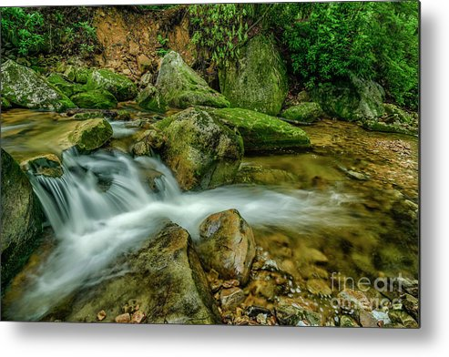 Kens Creek Metal Print featuring the photograph Kens Creek In Cranberry Wilderness by Thomas R Fletcher