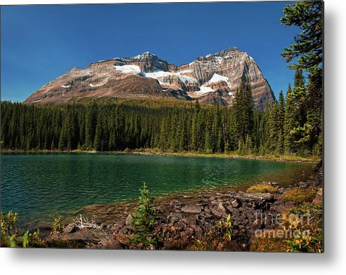 Lake O'hara Metal Print featuring the photograph Lake O'hara, Yoho National Park by Yefim Bam