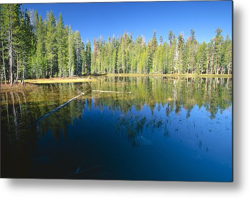 Beauty In Nature Metal Print featuring the photograph Lake Reflections Yosemite National Park California by George Oze