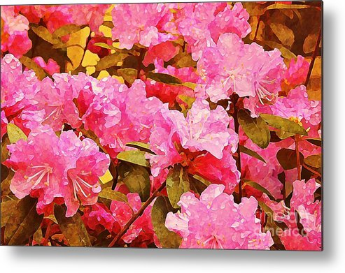 Metal Print featuring the photograph Lilac Candy by Amy Shumway