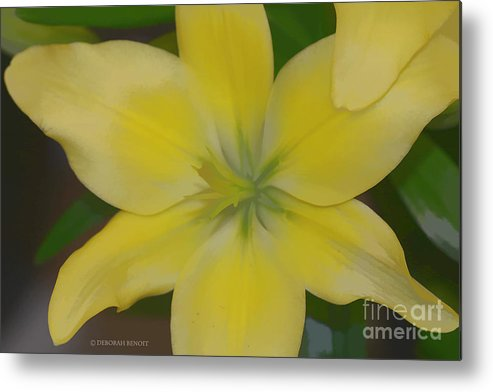 Lilly Metal Print featuring the photograph Lilly With Artistic Beauty by Deborah Benoit