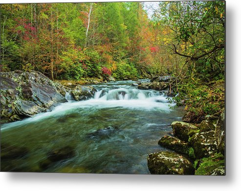 Smoky Mountains Metal Print featuring the photograph Little Pigeon River Flows In Autumn In The Smoky Mountains by Carol Mellema