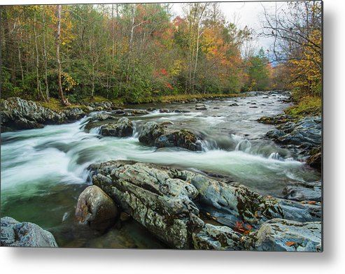 Smoky Mountains Metal Print featuring the photograph Little Pigeon River In Autumn In Smoky Mountains In Autumn by Carol Mellema