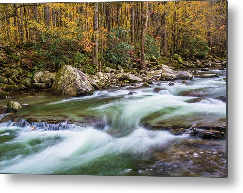 Smoky Mountains Metal Print featuring the photograph Little Pigeon River In Fall In The Smokies by Carol Mellema