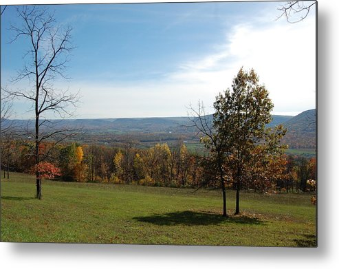 Fields Metal Print featuring the photograph Looking At Fall Colors In The Field by Richard Botts