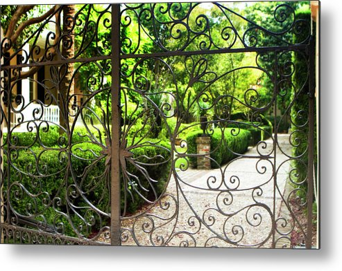 Photo Metal Print featuring the photograph Magnolia Gate by Alan Hausenflock