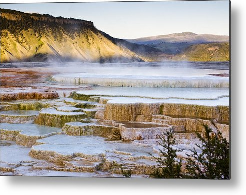 Chad Davis Metal Print featuring the photograph Mammoth Hot Springs by Chad Davis