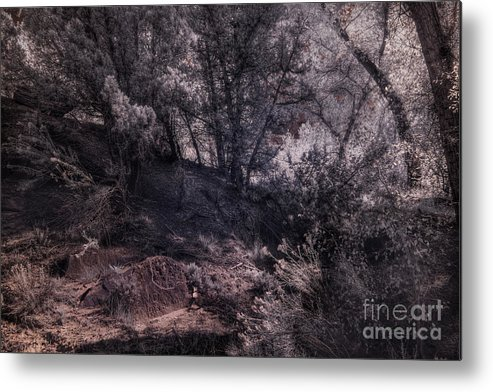 Md His Place Metal Print featuring the digital art Md His Place by William Fields