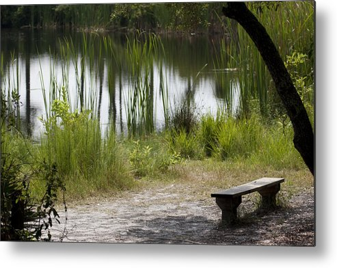 Pond Metal Print featuring the photograph Meditation Spot By A Pond by Tina B Hamilton