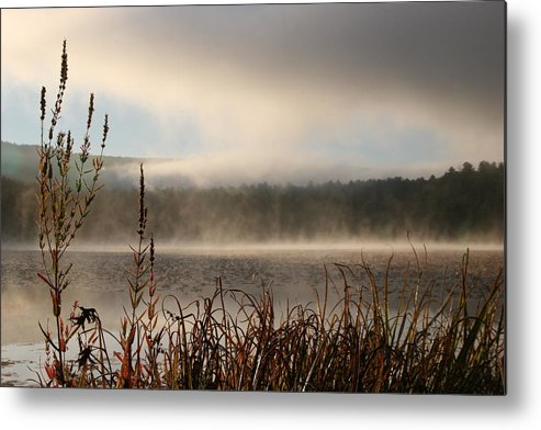 Misty Morning Metal Print featuring the photograph Misty Morning by Linda Russell