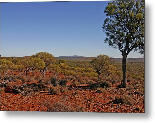 View To Mt Singleton From Homestead Ridge Trail. This Area Of Western Australia Is Rich In Iron Ore Metal Print featuring the photograph Mount Gibson Station Wa by Tony Brown