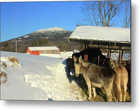 New Hampshire Metal Print featuring the photograph Mount Monadnock From East Hill Farm by John Burk