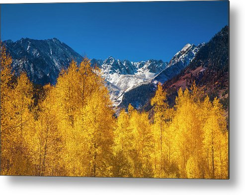 Autumn Metal Print featuring the photograph Mountain Gold by Andrew Soundarajan