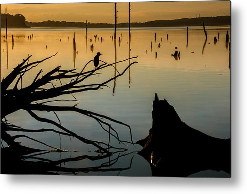 Lake Metal Print featuring the photograph Mystical Sunrise On The Lake by Tetyana Ohare