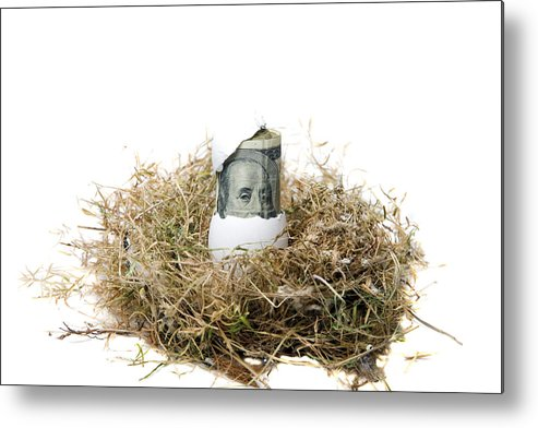 Mikeledray Metal Print featuring the photograph Nest Egg by Michael Ledray